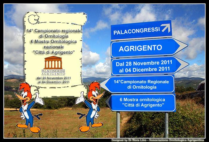 Calendario Mostre Ornitologiche 2019 Sicilia.Associazione Ornitologica Agrigentina